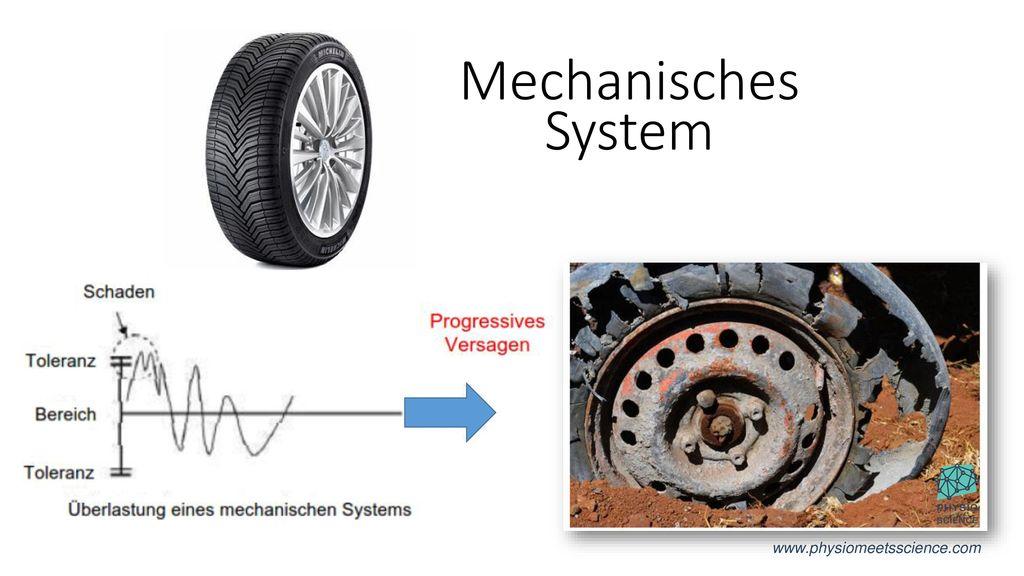 Mechanisches System www.physiomeetsscience.com