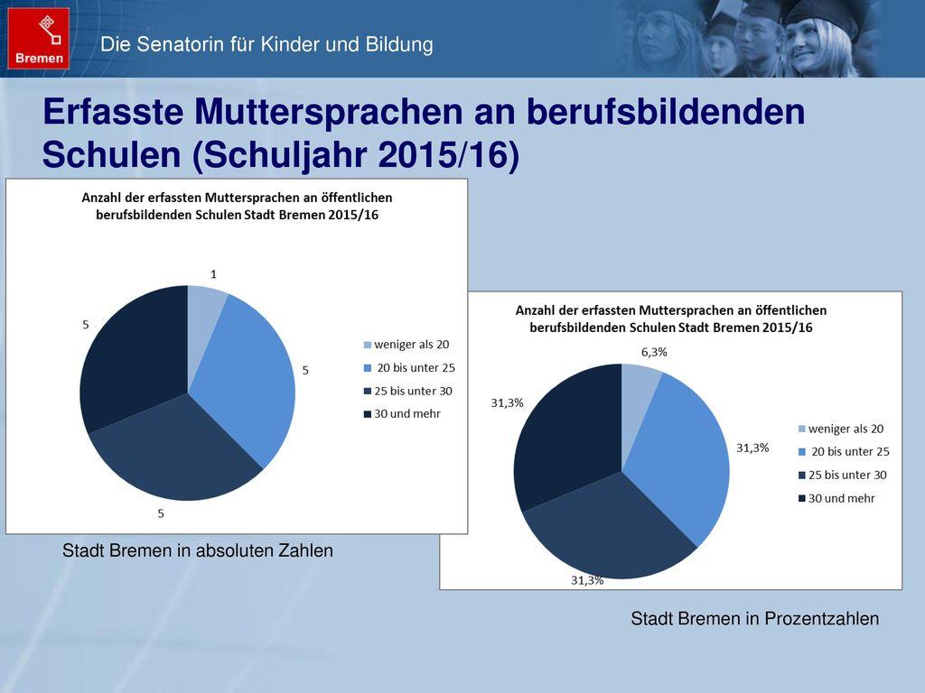 Erfasste Muttersprachen an berufsbildenden Schulen (Schuljahr 2015/16)