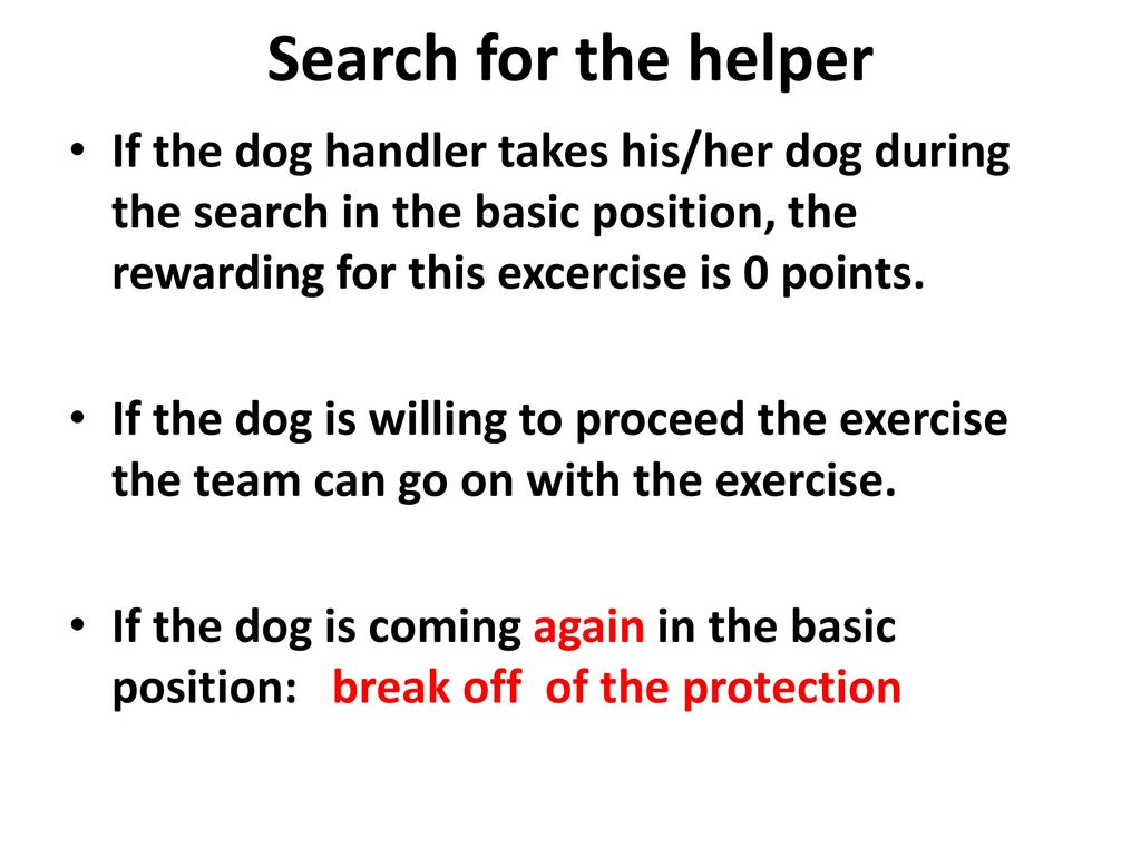 Search for the helper If the dog handler takes his/her dog during the search in the basic position, the rewarding for this excercise is 0 points.
