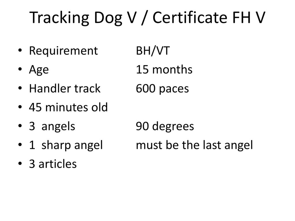 Tracking Dog V / Certificate FH V