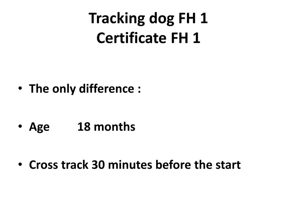 Tracking dog FH 1 Certificate FH 1