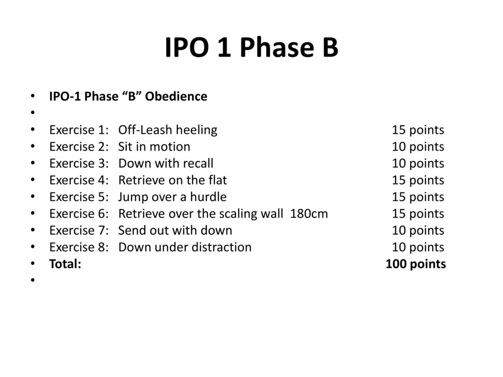 IPO 1 Phase B IPO-1 Phase B Obedience