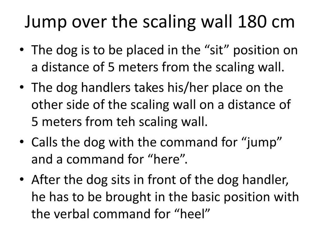Jump over the scaling wall 180 cm