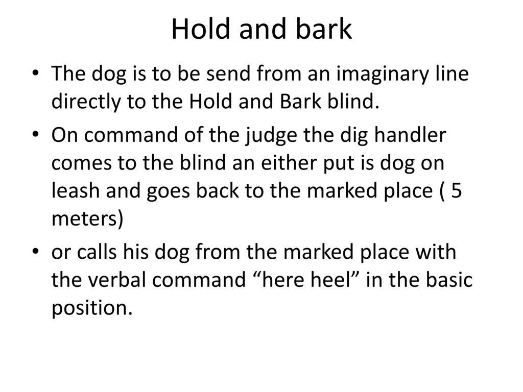 Hold and bark The dog is to be send from an imaginary line directly to the Hold and Bark blind.