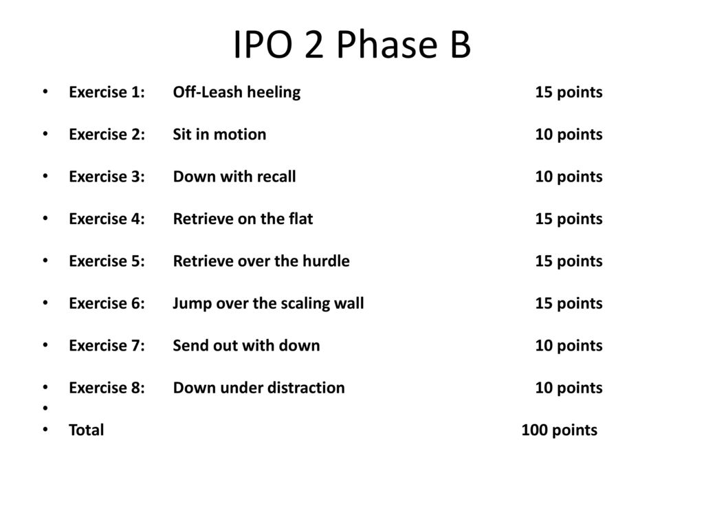 IPO 2 Phase B Exercise 1: Off-Leash heeling 15 points