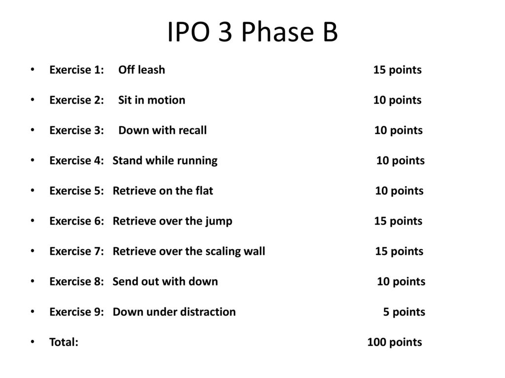 IPO 3 Phase B Exercise 1: Off leash 15 points