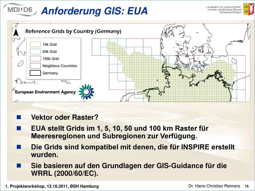 Anforderung GIS: EUA Vektor oder Raster