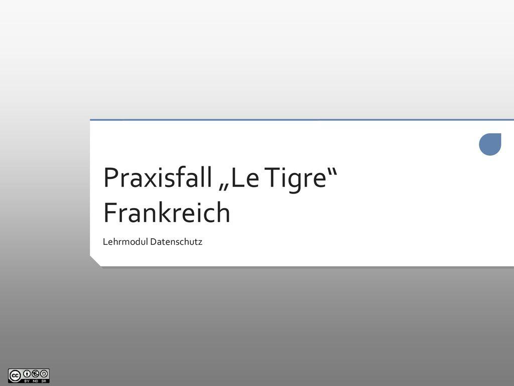 """Praxisfall """"Le Tigre Frankreich"""