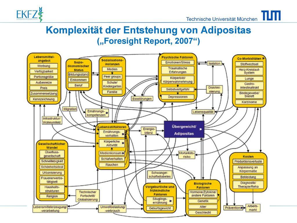 """Komplexität der Entstehung von Adipositas (""""Foresight Report, 2007 )"""
