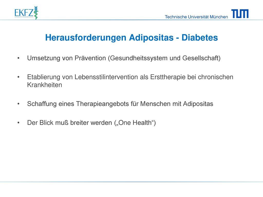 Herausforderungen Adipositas - Diabetes