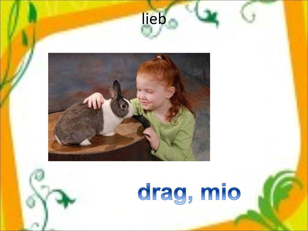 lieb drag, mio