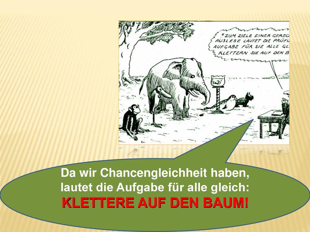 Da wir Chancengleichheit haben, lautet die Aufgabe für alle gleich: KLETTERE AUF DEN BAUM!