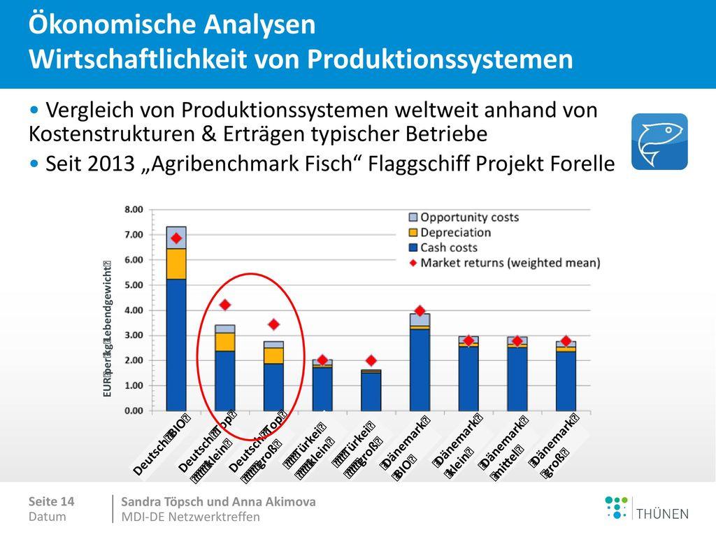 Ökonomische Analysen Wirtschaftlichkeit von Produktionssystemen