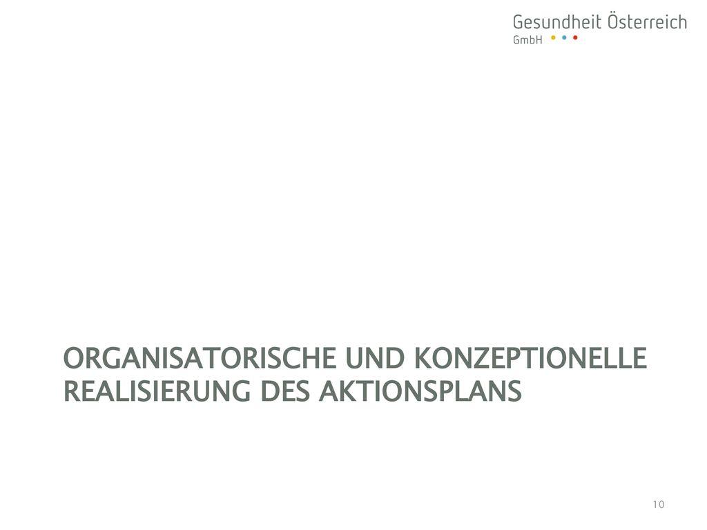 Organisatorische und konzeptionelle Realisierung des Aktionsplans