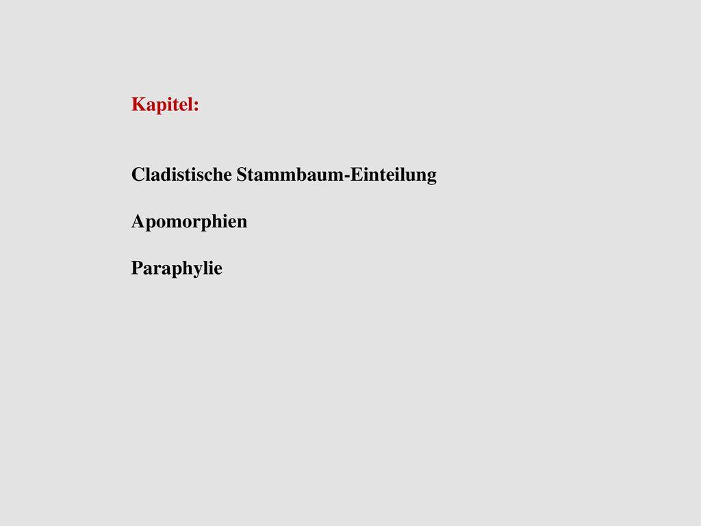 Kapitel: Cladistische Stammbaum-Einteilung Apomorphien Paraphylie