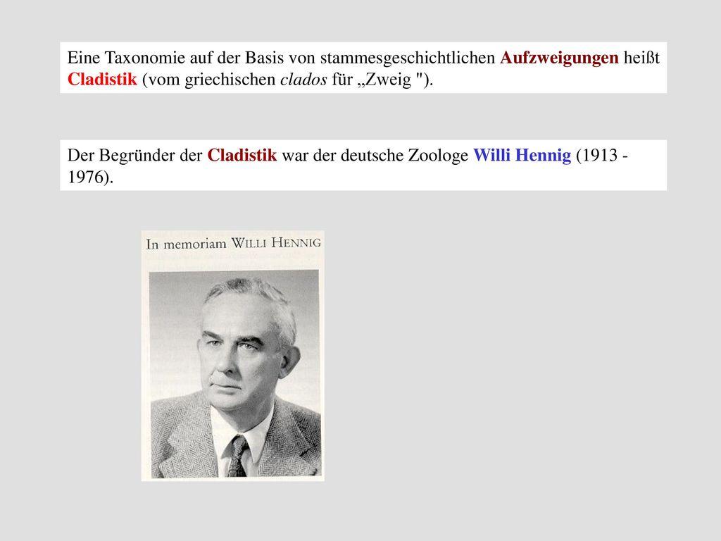 """Eine Taxonomie auf der Basis von stammesgeschichtlichen Aufzweigungen heißt Cladistik (vom griechischen clados für """"Zweig )."""
