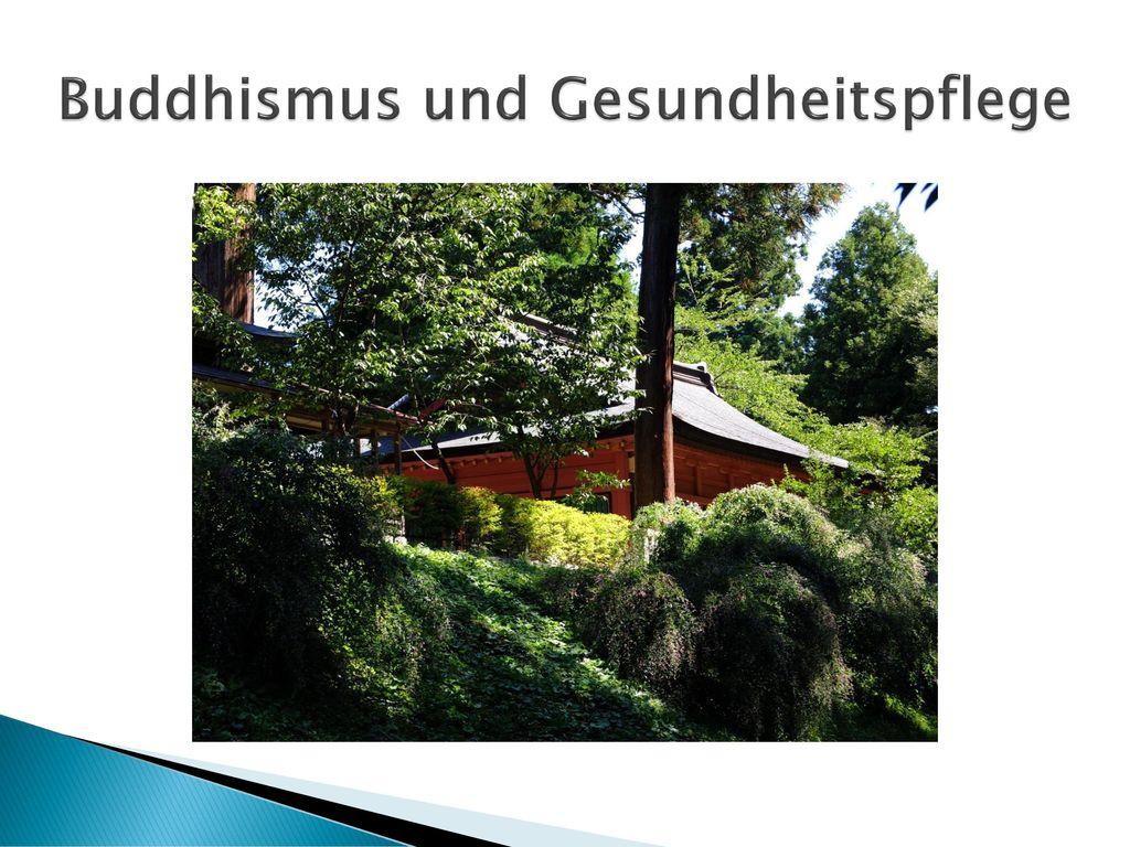 Buddhismus und Gesundheitspflege