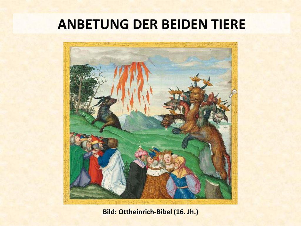 ANBETUNG DER BEIDEN TIERE Bild: Ottheinrich-Bibel (16. Jh.)