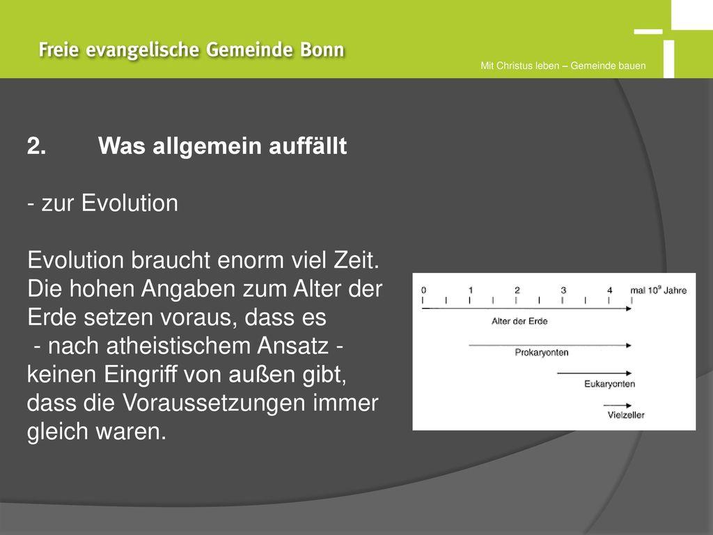 2. Was allgemein auffällt zur Evolution