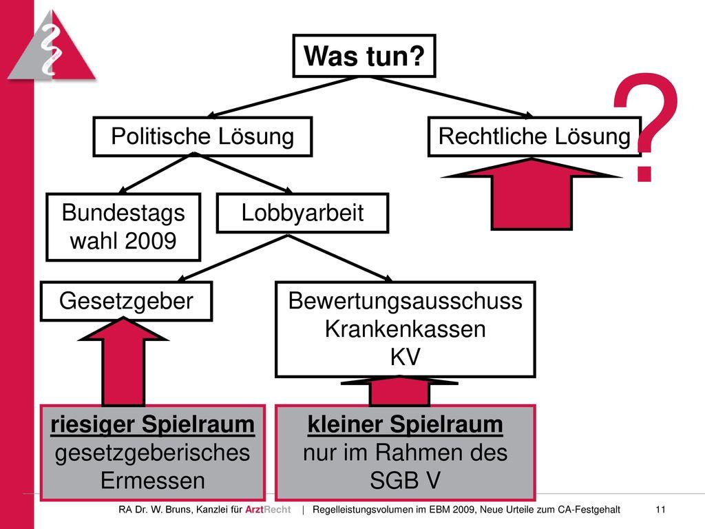 Was tun Politische Lösung Rechtliche Lösung Bundestagswahl 2009