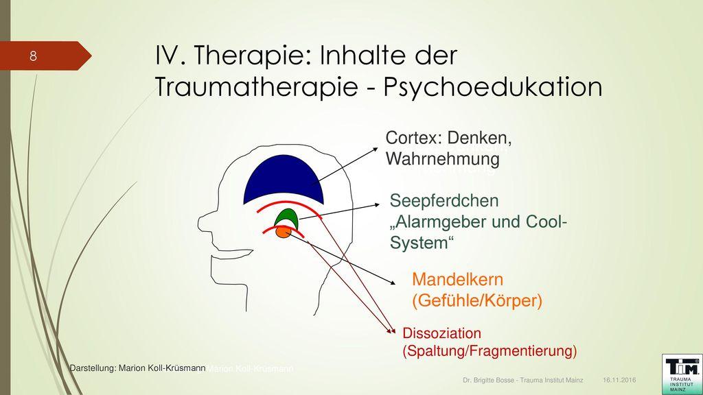 IV. Therapie: Inhalte der Traumatherapie - Psychoedukation