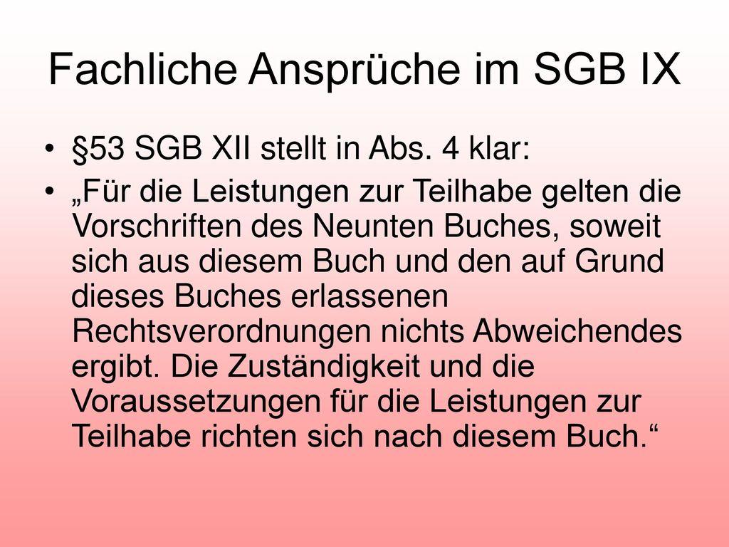 Fachliche Ansprüche im SGB IX