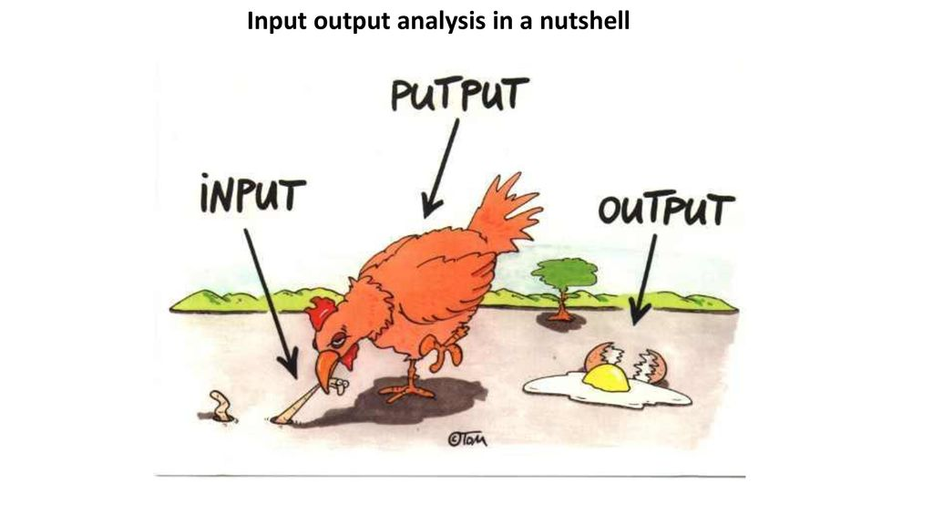 Input output analysis in a nutshell