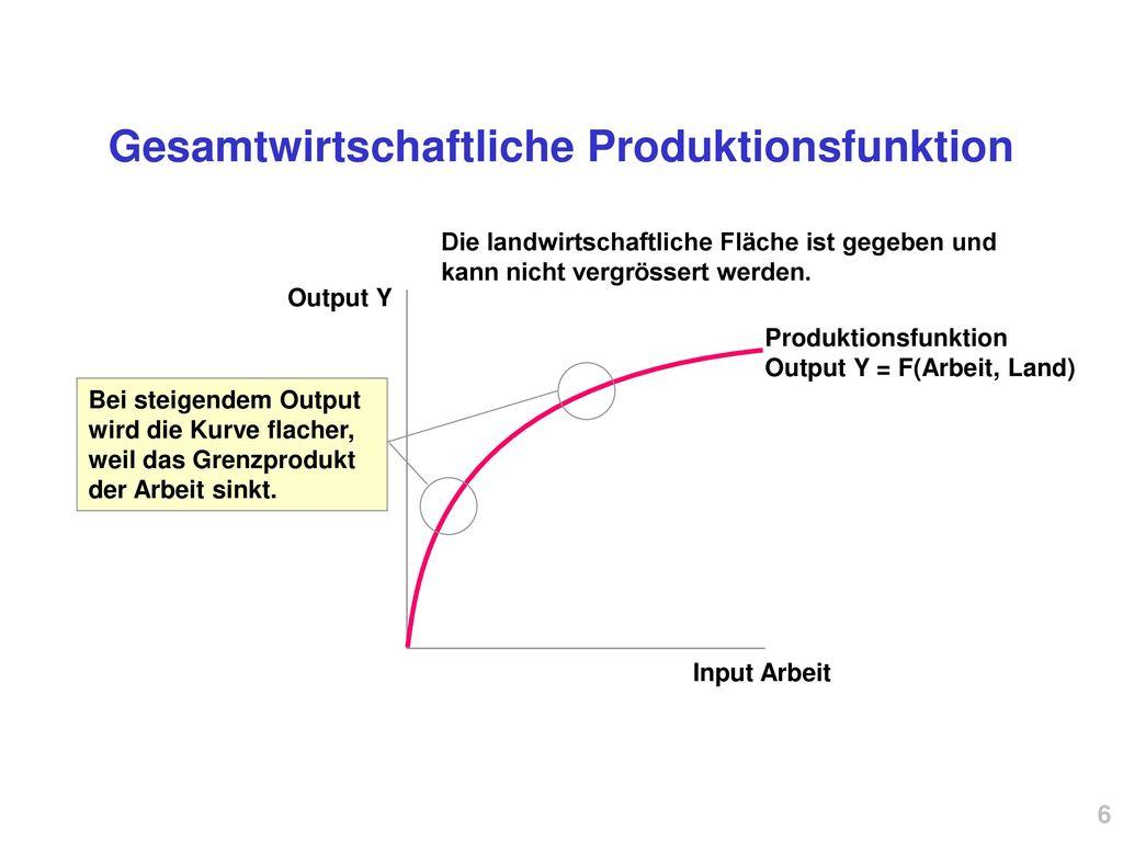 Gesamtwirtschaftliche Produktionsfunktion