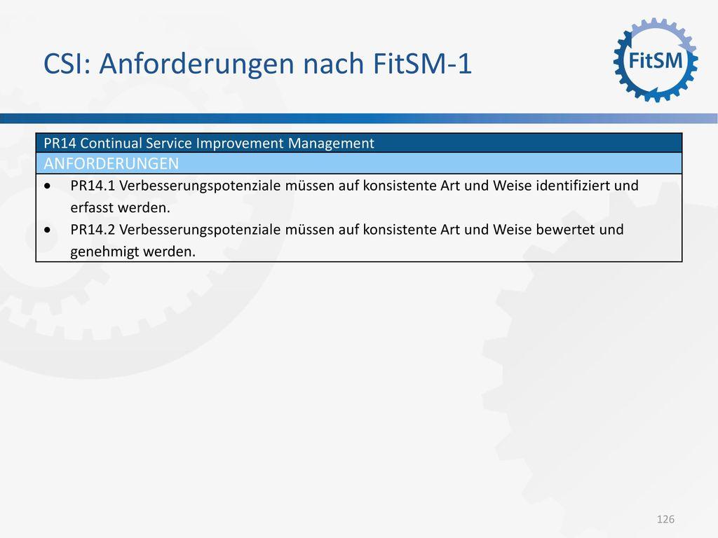 CSI: Anforderungen nach FitSM-1