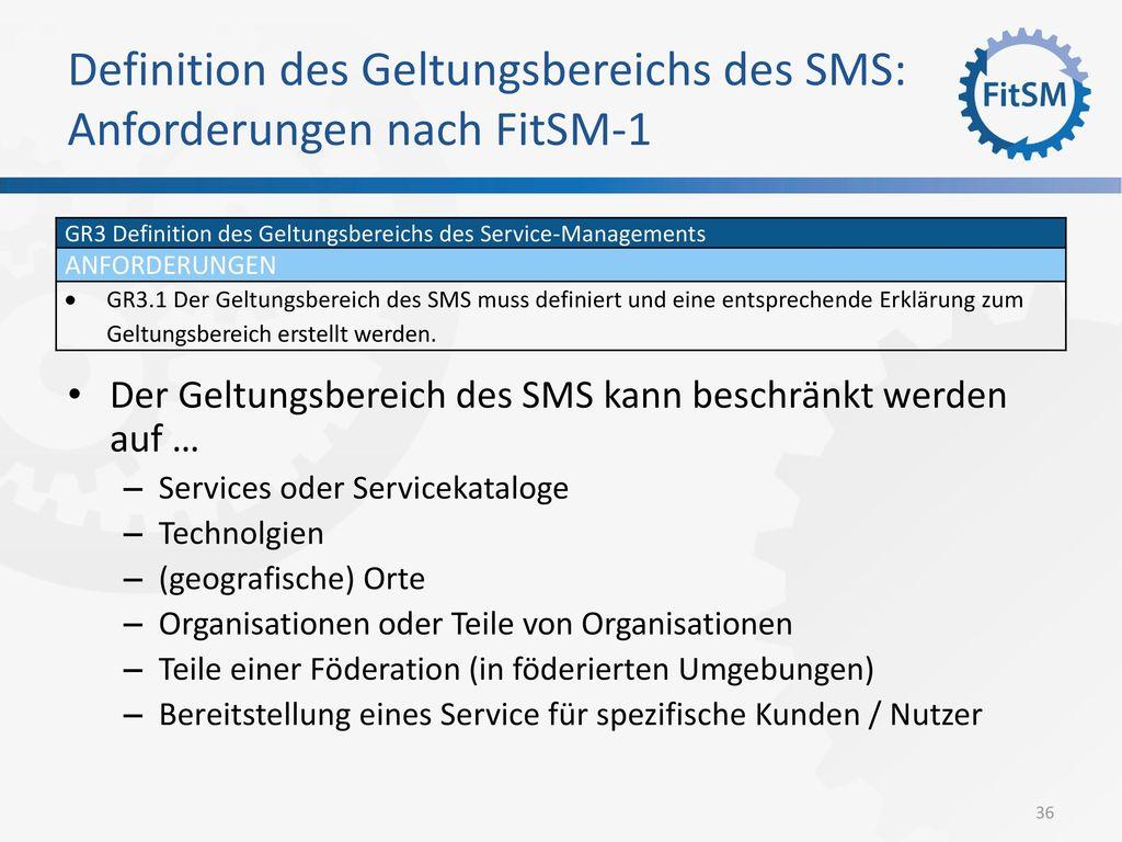 Definition des Geltungsbereichs des SMS: Anforderungen nach FitSM-1