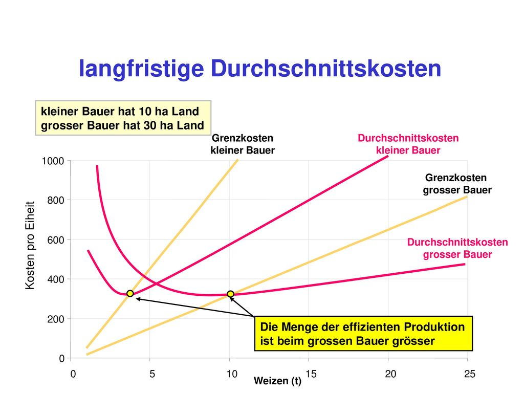 kurz- und langfristige Kostenminimierung