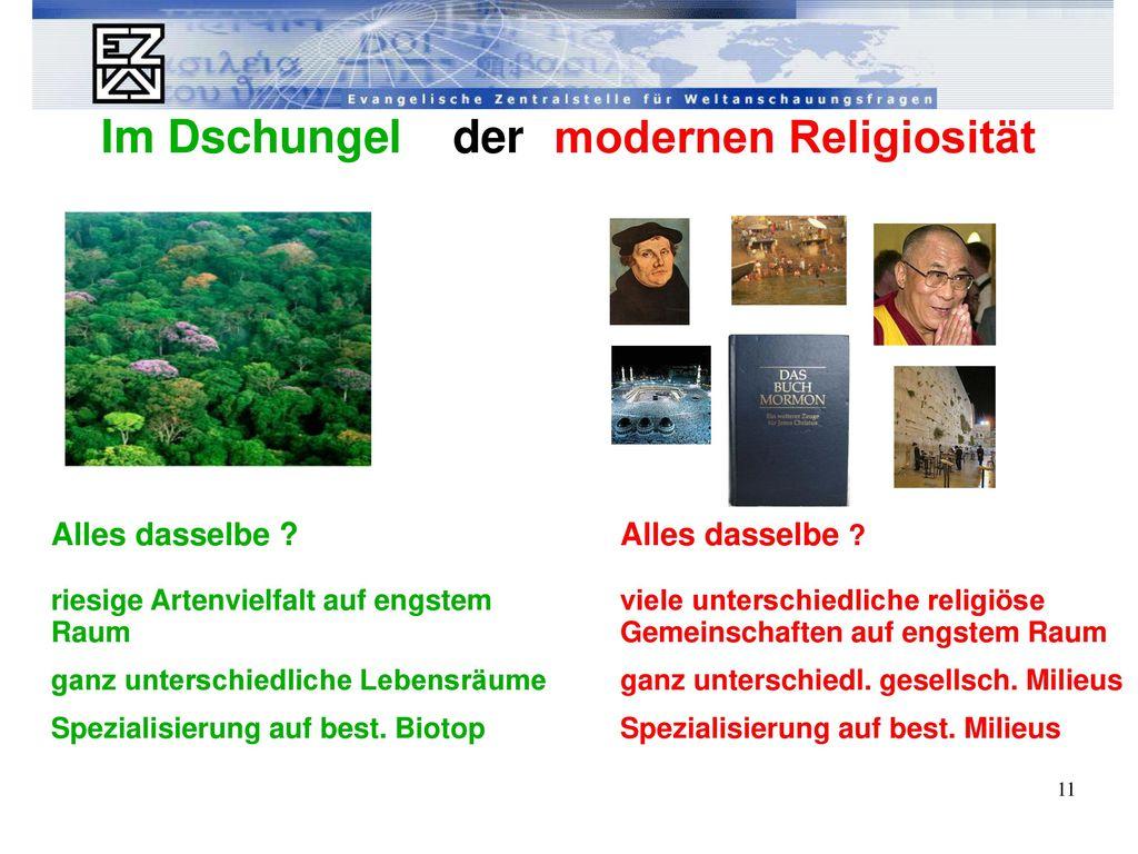 Im Dschungel der modernen Religiosität