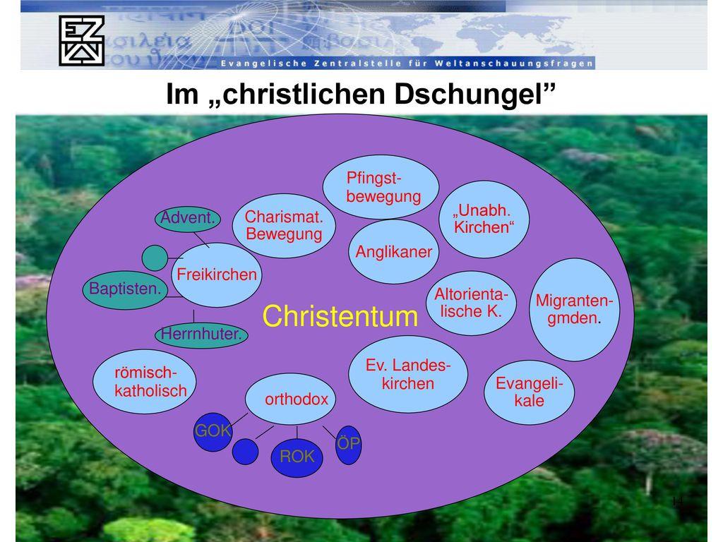 """Im """"christlichen Dschungel"""