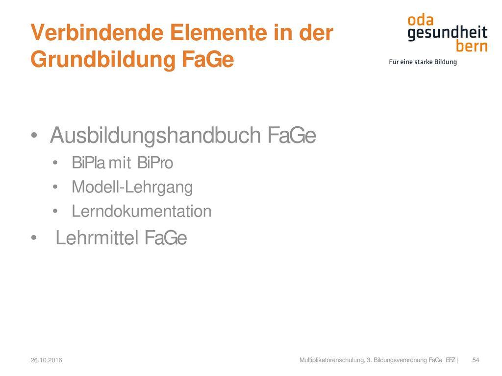 Verbindende Elemente in der Grundbildung FaGe