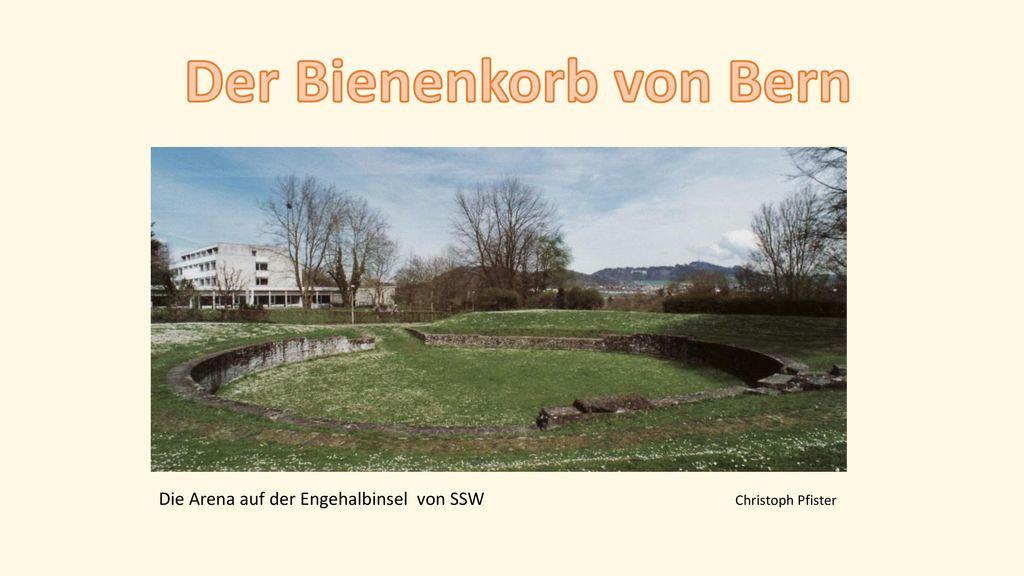 Der Bienenkorb von Bern