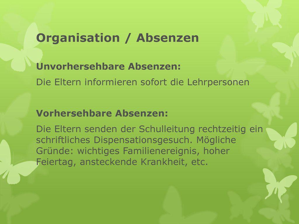 Organisation / Absenzen