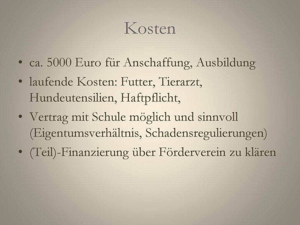 Welche Rasse Eingesetzt werden deutschlandweit vorzugsweise Retriever.