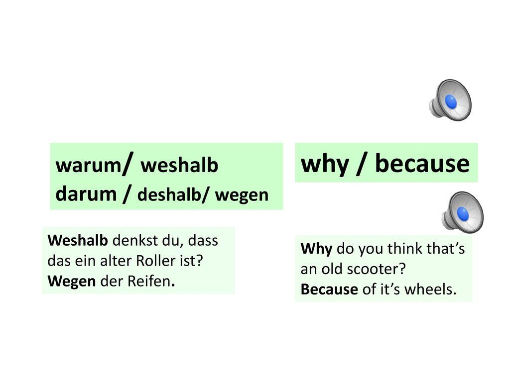 why / because warum/ weshalb darum / deshalb/ wegen