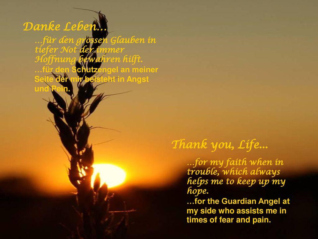 Danke Leben… Thank you, Life...