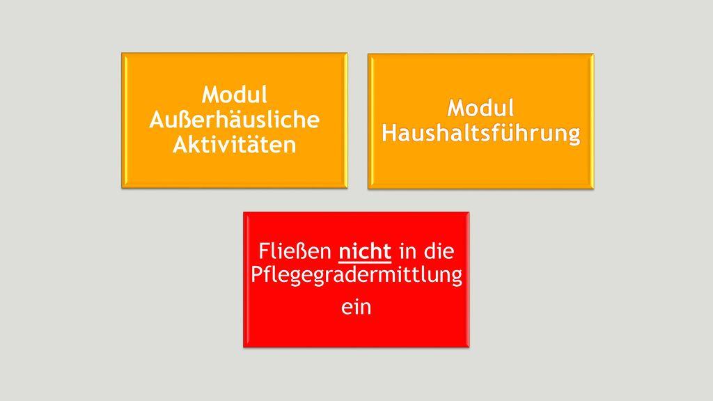 Modul Außerhäusliche Aktivitäten Modul Haushaltsführung
