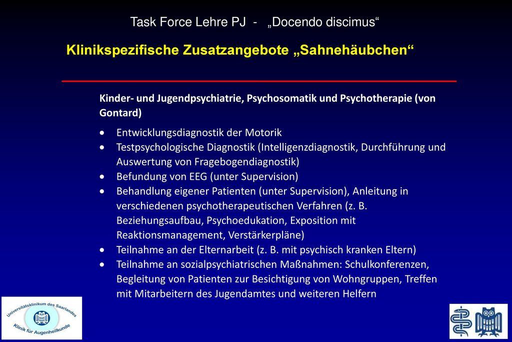"Task Force Lehre PJ - ""Docendo discimus"