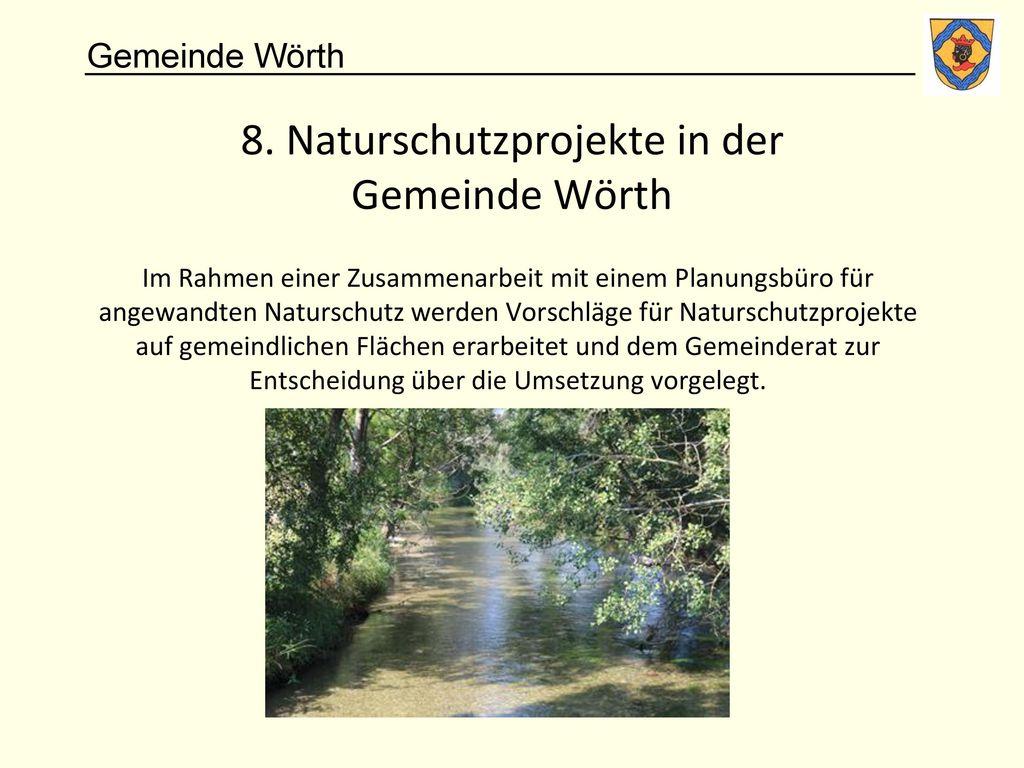 8. Naturschutzprojekte in der Gemeinde Wörth