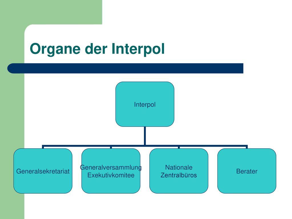 Organe der Interpol