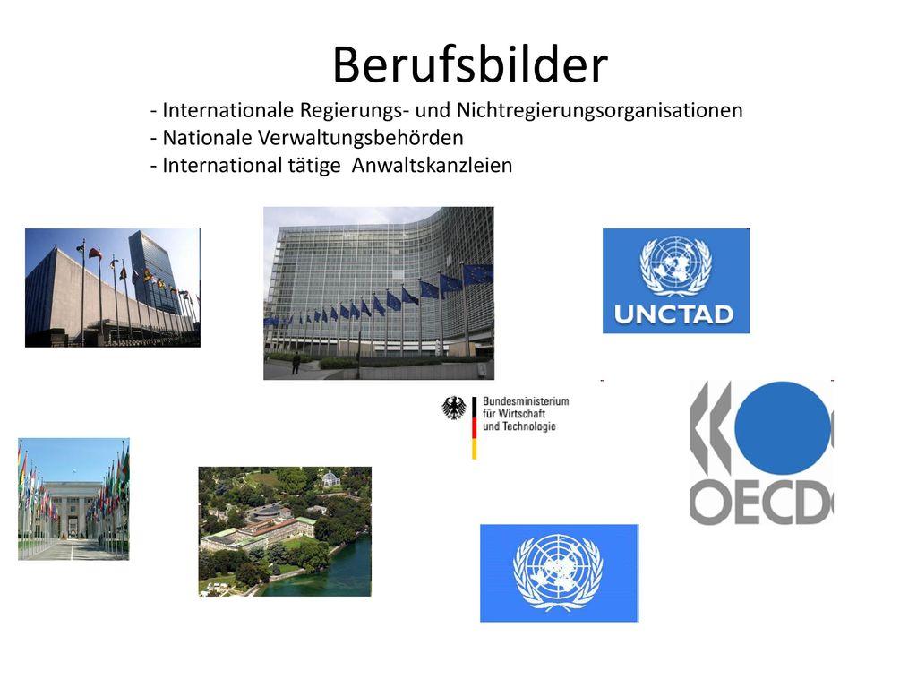 Berufsbilder - Internationale Regierungs- und Nichtregierungsorganisationen. - Nationale Verwaltungsbehörden.