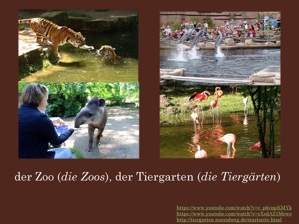 der Zoo (die Zoos), der Tiergarten (die Tiergärten)