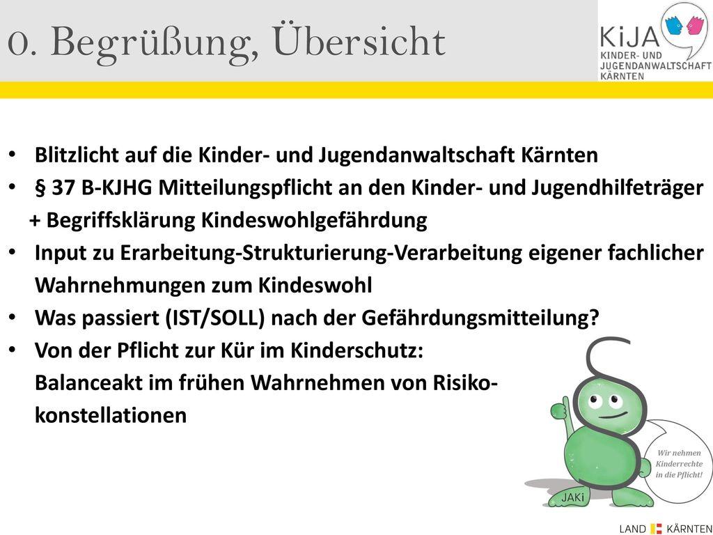 0. Begrüßung, Übersicht Blitzlicht auf die Kinder- und Jugendanwaltschaft Kärnten.
