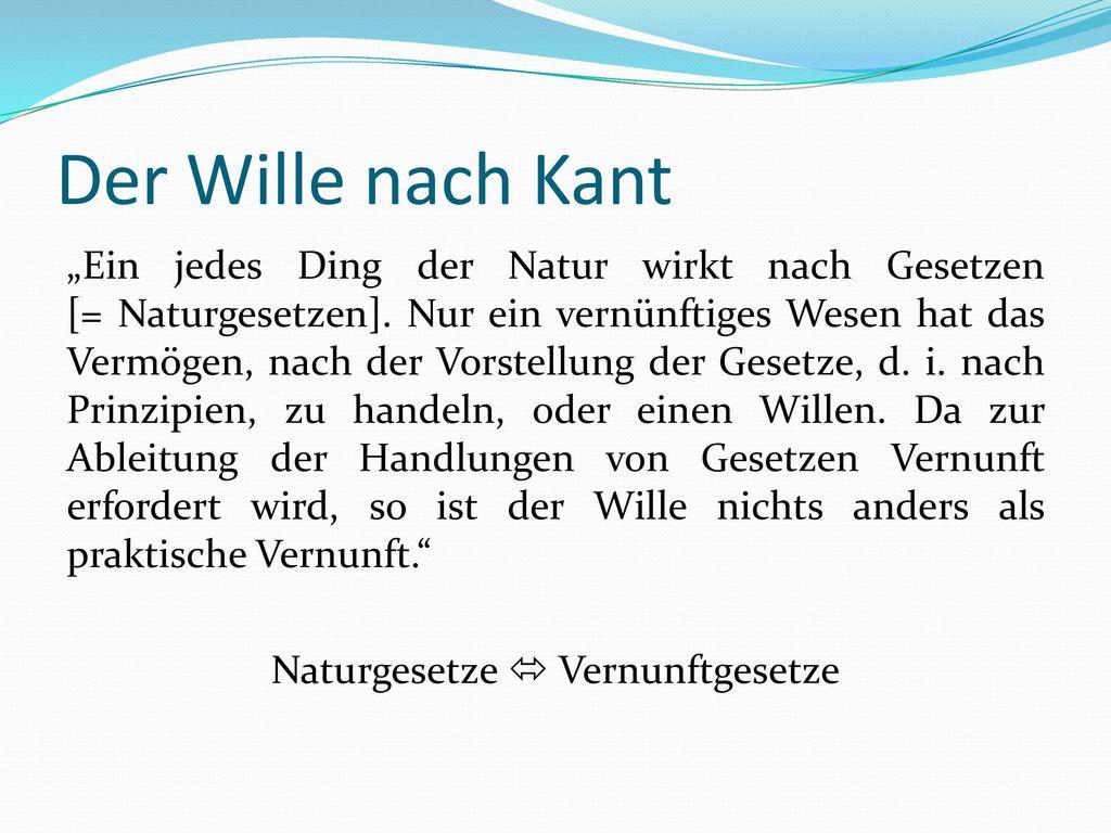 Der Wille nach Kant