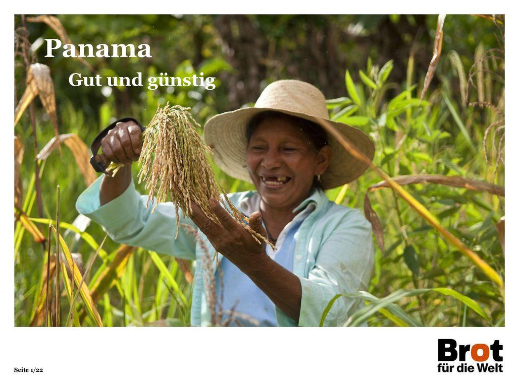 Panama Gut und günstig 1