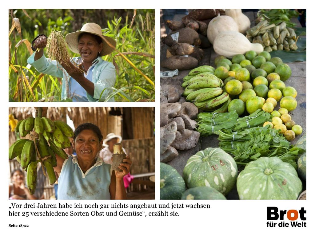 """""""Vor drei Jahren habe ich noch gar nichts angebaut und jetzt wachsen hier 25 verschiedene Sorten Obst und Gemüse , erzählt sie."""