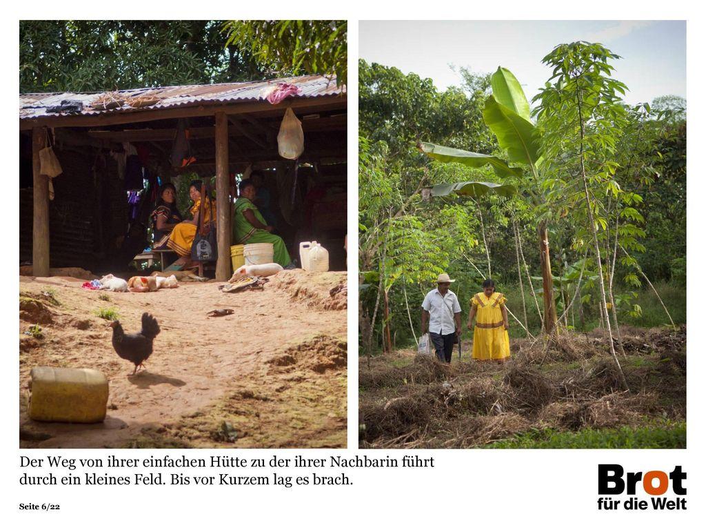 Der Weg von ihrer einfachen Hütte zu der ihrer Nachbarin führt durch ein kleines Feld. Bis vor Kurzem lag es brach.